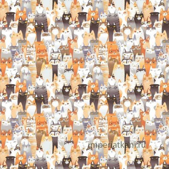 13128-1 котики детский поплин 150см